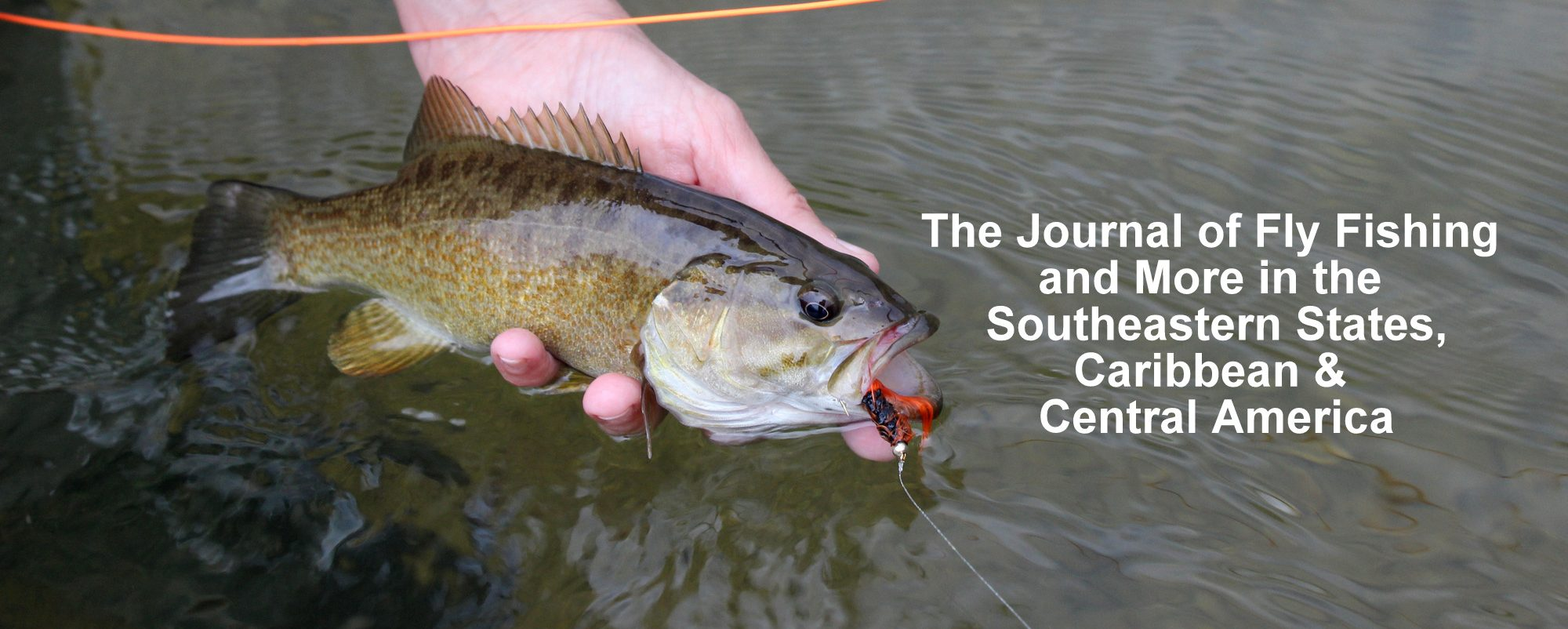 ON THE FLY SOUTH